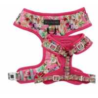 Big and Little Dogs ajustable Harness Born to be a Unicorn