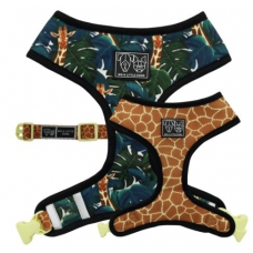 Big and Little Dogs Reversible Harness Standing Tall