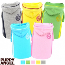 Puppy Angel Training Hoodie
